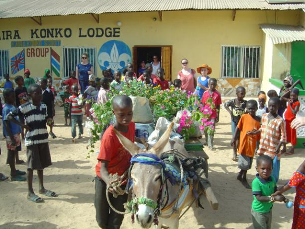 Using donkey power to get the plants to the school