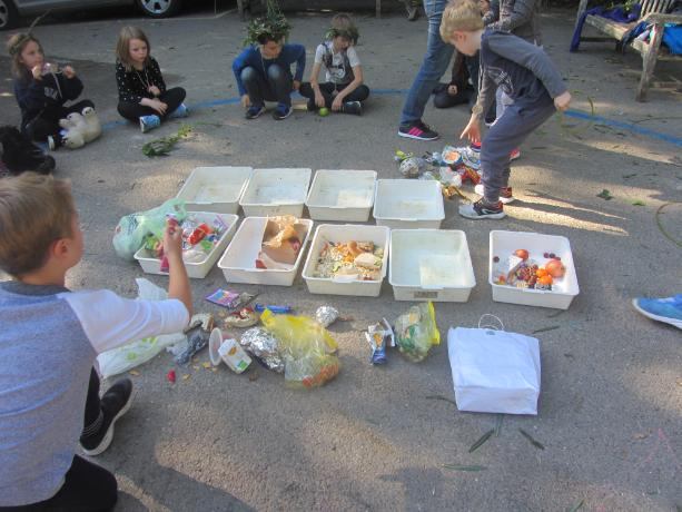 Sorting our packed lunch waste