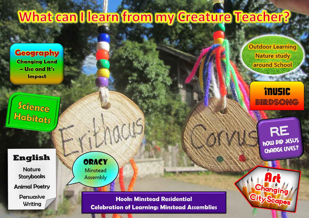 Year 4 What will I learn from my Creature Teacher 2020